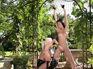 Love bdsm actions with these extreme babes