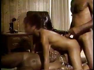 Ebony Ayes & Purple Passions